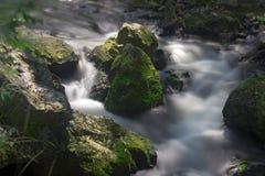 Divoka Sarka河 免版税图库摄影