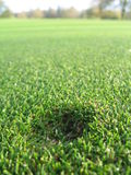 Divot mark from ball Royalty Free Stock Photography
