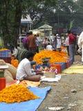Diwali blommor arkivfoton