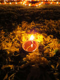 Diwali Ritual Lamp. A lamp surrounded with flower petals, lit for a ritual on the occassion of Diwali festival in India Stock Image