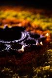 Diwalidiya of auspecious die olielamp uit teracotta wordt samengesteld Stock Fotografie