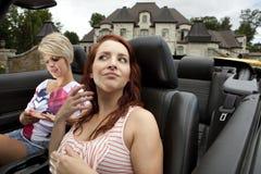 diwy jadą iść narcystyczne Fotografia Royalty Free