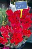 Dix roses du dollar Photographie stock libre de droits