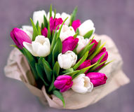 Dix tulipes blanches et dix roses Images stock