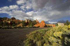 Dixie National Forest Royalty Free Stock Images