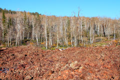 Dixie National Forest Lava Field Stock Image