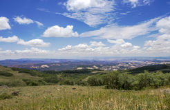 Dixie National Forest. A picture from the top of Dixie National Forest in Utah Stock Image