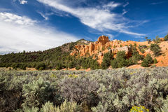 Dixie National Forest. Red Canyon, Utah Stock Photography