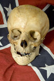 Dixie skull Stock Images
