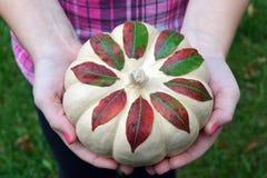 DIY Autumn Pumpkin Fotos de archivo