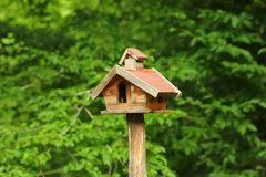 DIY, creative hand made wooden bird house/bird feeder with standing on a pole in the park. DIY, creative hand made wooden bird house/bird feeder with standing on stock images