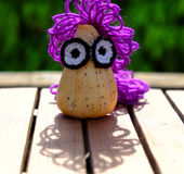 Diy creative owl from conch shell Stock Photography