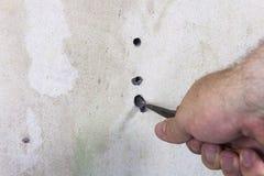DIY enlevant le vieux rawlplug avec des pinces Photo libre de droits