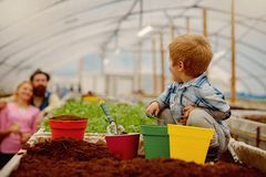 Diy garden. home diy garden with child and parents. diy garden hobby. diy garden with happy family. nature needs your. Care stock image