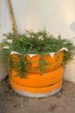 DIY-idee die van band te recycleren met bloemen of installatie in oud rubber wordt gebruikt stock fotografie