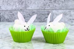 Diy kanin från ägg för påsk royaltyfria foton
