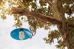 DIY-Lampe in der Landschaft Stockfoto