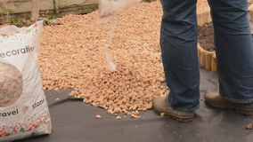 DIY laying gravel stock footage