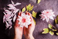 DIY making realistic flowers Stock Photo
