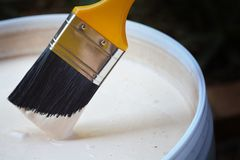 DIY Paint. A medium sized yellow paint brush with black bristles, edge dipped into light cream color plastic bucket of paint Royalty Free Stock Photo