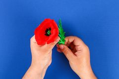 Diy paper red poppy Anzac Day, Remembrance, Remember, Memorial day crepe paper on blue background. 35 Diy paper red poppy Anzac Day, Remembrance, Remember royalty free stock image