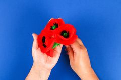 Diy paper red poppy Anzac Day, Remembrance, Remember, Memorial day crepe paper on blue background. 36 Diy paper red poppy Anzac Day, Remembrance, Remember royalty free stock photography