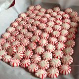 DIY-pepermuntdienblad voor koekjes Stock Fotografie