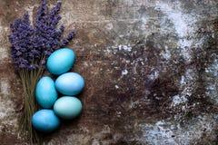 DIY teñió varios tonos de los huevos y de la lavanda azules de Pascua en fondo oxidado retro del metal Fotos de archivo libres de regalías