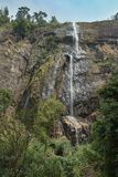 Diyaluma瀑布在斯里兰卡 库存图片