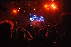 Dj at the concert. Dj at Peninsula Festival in Targu Mures Royalty Free Stock Photo