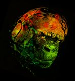 DJ monkey headphones music T-shirt design. Chimp with headphones t-shirt cool funny music design can be printed straight onto a t-shirt Royalty Free Stock Images