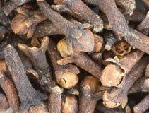 Djamboevrucht - kruidnagel - close-up Royalty-vrije Stock Afbeeldingen