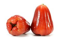 Djamboevruchten of chomphu Royalty-vrije Stock Afbeeldingen