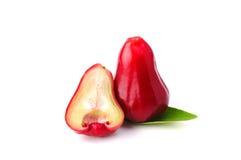 Djamboevruchten of chomphu die op witte backgroun worden geïsoleerde Stock Afbeeldingen