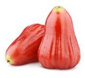 Djamboevruchten of chomphu op wit worden geïsoleerd dat Royalty-vrije Stock Foto's