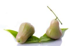 Djamboevruchten die op witte achtergrond worden geïsoleerde Royalty-vrije Stock Afbeelding