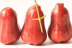 Djamboevruchten op wit. Stock Fotografie