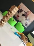 Django game with a picture of a cat