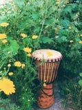 Djembe - tambour en bois d'Afrique de l'ouest Photos stock