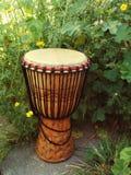 Djembe - tamburo dell'Africa Occidentale tradizionale Immagine Stock
