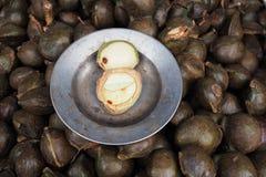 Djenkol bönafrukt i den lokalThailand marknaden, den Archidendron jiringaen kärnar ur, den Djenkol bönan, Djenkol frukt Royaltyfri Bild