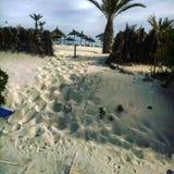 Djerba. Beach in djerba Stock Photography