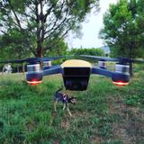 Dji spark drone. Dji drone and Dog royalty free stock images