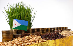 Djibouti flag waving with stack of money coins and piles of wheat Stock Images