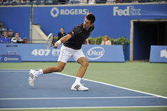 Djokovic罗杰斯杯子2012年(166) 库存图片