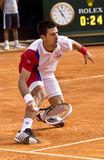 Djokovic Stock Image