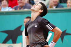 Djokovic Novak emotions (159) stock photo