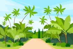 Djungel Forest Green Landscape med vägbanan Arkivbild