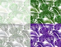 Djungel Frodiga sidor av tropiskt gömma i handflatan, monster, agaves Uppsättning Sömlöst i olika färger bakgrund isolerad white Arkivfoton