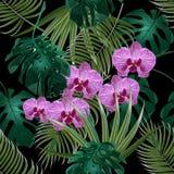 Djungel Grönt tropiskt blad, orkidéblommor och palmblad seamless blom- modell På svart bakgrund stock illustrationer